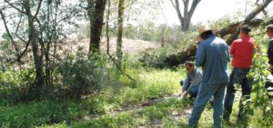WEI Environmental Services Site Investigation